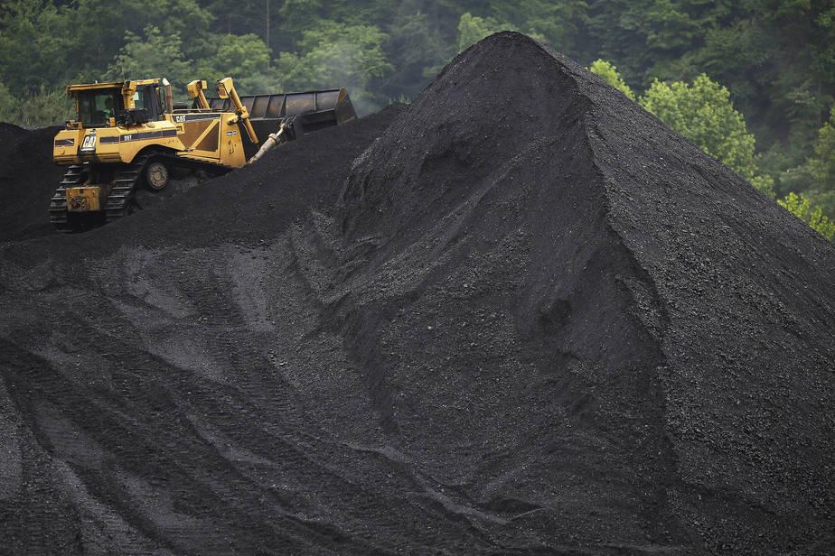 Bulk Coal Suppliers